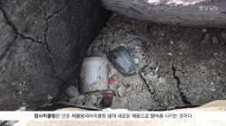 [굿모닝 내셔널] 해변쓰레기가 예술작품으로 … 제주 바다 살리는 '비치코밍'