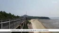 [굿모닝 내셔널]스카이워크로 바다와 갈대밭 걷는 서천