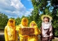 [소년중앙] 야생 벌 40%가 멸종 위기…살기 힘든 꿀벌이여, 도시에서 함께 살자