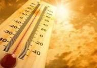 """""""여름철 기온 1℃ 오르면 급성신부전 환자 23%늘어...고혈압 남성 주의해야"""""""