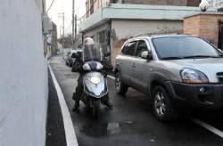 골목길 '갑툭튀' 차량에 멈추는 이유 확인했다..뇌 속 공포 반응 회로 규명