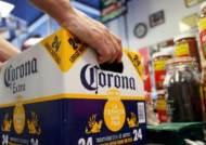 맥주 '코로나' 제조사, 마리화나 음료 제조 본격화…4.5조 투자