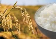 [食쌀을 합시다] 밥심으로 일군 한민족 역사 … 쌀은 희망 입니다