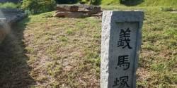 """[일요기획]""""의로운 말 묻힌 파주 '의마총' 향토문화유산 지정을"""""""