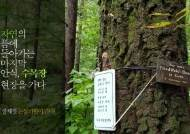 [장세정 논설위원이 간다] 수목장 인기에 공급 부족…소나무 한그루에 6000만원 폭리