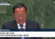 """이용호 """"일방 핵무장 해제 없다"""" 상응조치 요구"""