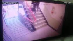 부산 일가족 살해범, 질투심에 강아지도 던져 죽였다