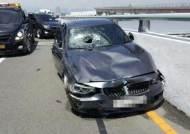 김해공항 BMW 운전자 '금고 2년' 판결…징역형과 다른 점은