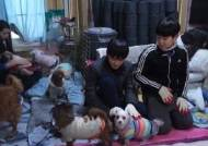"""[소년중앙] """"동물권 위해 노력해야 하는 이유요? 모든 개 혼자 구할 순 없잖아요"""" 배우 이용녀 씨를 만나다"""