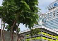 [동남아 유니콘-싱가포르]싱가포르, 핀테크 창업 땐 최대 33억원 지원
