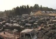 [사진] 동해 산불, 폭격 맞은 것처럼···동트자 처참했다
