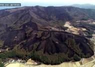 '고성에서 강릉까지…' 위성사진으로 본 산불 피해 면적