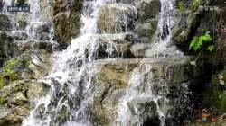 [영상]남산의 물소리가 정겨운 초여름 날씨