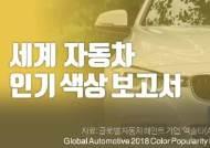 [영상] 무슨 색 자동차가 잘 팔릴까?