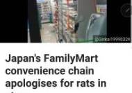 손바닥만한 쥐가 우글우글···도쿄 패밀리마트 충격영상