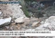 불법 시설이 점령했던 남양주 수락산 계곡, 시민 정원으로 재탄생