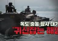 해병대 독도방어 상륙작전···27t 장갑차가 바다 위를 달렸다