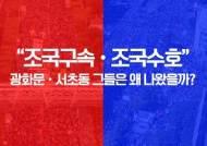 [영상]난 이래서 광화문·서초동 갔다···거리위 분노의 인터뷰