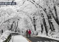 [영상] 설국으로 변한 서울 남산