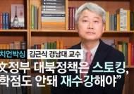 """[정치언박싱] 김근식 """"文정부 대북정책은 스토킹, C학점 안돼 재수강해야"""""""