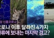 [영상]지구의 마지막 경고?…코로나19 이후 달라진 4가지