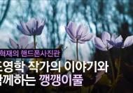 [권혁재 핸드폰사진관] 폰카로 DSLR급 사진찍기 '가평 계곡서 만난 깽깽이풀'