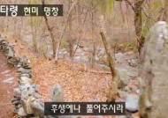 [권혁재의 사람사진] 어미의 마음으로 쌓은 3000 탑