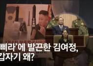"""[영상] """"대북전단 방치땐 최악""""···김여정 엄포엔 '공포' 비친다"""