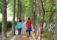 코로나 이후 파라솔·해설사 사라지고, 도심숲길 걷는다