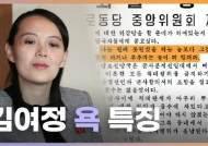 """[영상]""""개인 SNS에나 쓸 말 같다""""···김여정 욕의 5가지 공식"""