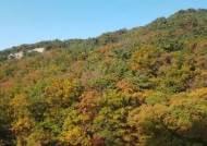 북한산국립공원 비경 '우이령길' 탐방 쉬워진다…7월 1일부터