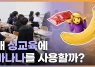 [영상]왜 우리는 바나나로 성교육을 하게 된 걸까?