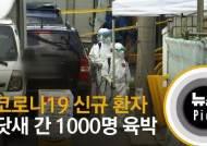 [뉴스픽] 코로나19 신규 환자 닷새 간 1000명 육박