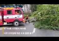 """태풍 '바비' 물폭탄 들고 올라온다···""""수도권 초속 60m 강풍"""""""