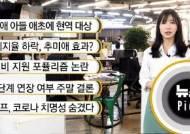 [뉴스픽] 文 지지율 하락, 추미애 효과?