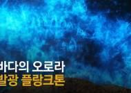 """[영상]""""바다 오로라 뒤 적조 오더라"""" 통영 바다 야광충 반전"""