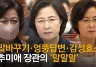 """신원식 """"秋아들 휴가연장 전화 목소리는 여자, 기록엔 秋남편"""""""