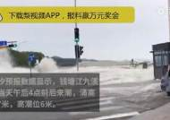 바다 아닌 강에서 6m 파도...車 수십대 순식간에 쓸어버렸다 [영상]