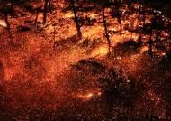 연중 대형산불 겪는 한국…'산불 조심 기간' 이젠 의미 없다