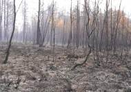 동토 시베리아가 38도 폭염…땅속 '좀비'들이 살아났다