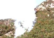 [속보]서울 북한산 족두리봉 근처서 산불…소방당국 진화중