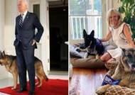 '결벽증' 트럼프가 4년간 비운 한자리…바이든이 부활시킨다