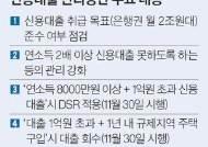 """""""신용대출 막차 타자"""" 주말 비대면 대출액 3배로"""