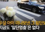 '일가족 참변' 스쿨존 횡단보도, 사고재발 우려에 아예 없앤다
