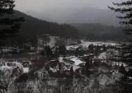 빛 반짝이는 겨울밤 '수목원'…코로나 시름 놓고 추억 쌓기