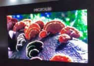 [영상]삼성 최신작 '마이크로 LED TV', OLED보다 나은 점은