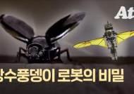 추락 않고 은밀한 미션 수행…장수풍뎅이 로봇 만든 한국인