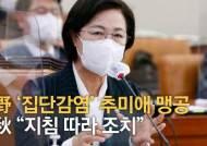 """구치소 집단감염에 MB 탓한 추미애…김근식 """"남탓 끝판왕"""""""