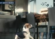 반려견 '토비', 가상인간 '래아'…CES 깜짝스타로 떴다