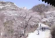 '코로나 우울감' 날려주는 북한산 동영상 관광[영상]